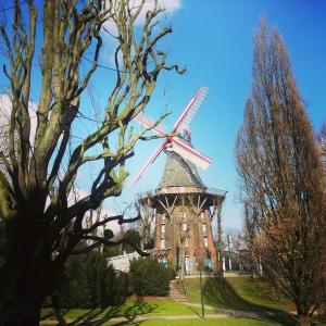 The Alte Mühle