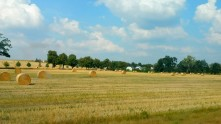 Passing by fields of gold and bales of hay on the way to Brandenburg